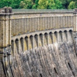 『ダムの高齢化と自然破壊、灰色のサイ』の画像
