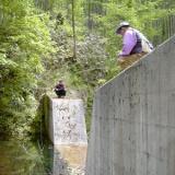 春うらやかな5月!1点で5尾釣れた西川(信濃川)のサムネイル
