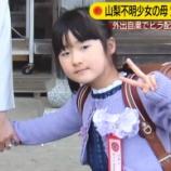 『【未解決事件】山梨キャンプ場で女の子が消えたの覚えてる?【小倉美咲ちゃん】』の画像