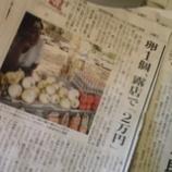『卵1個、2万円ねぇ。』の画像