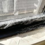 『《【大掃除】窓のパッキンが黒い!湿布してカビ取りしました》』の画像