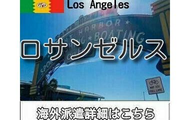 『ロサンゼルスインコール求人情報』の画像