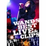 『DVD Review:WANDS「WANDS BEST LIVE & CLIPS」』の画像