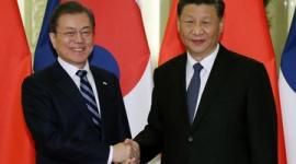 【新型肺炎】救護品、韓国のほうが多く送ったのに…日本だけに「感動」、韓国には圧力