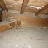『雨漏りの跡がたくさん・・・~天井点検口新設。』の画像