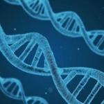 人生は親から与えられた遺伝子と環境で全てが決まるという事実