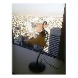 『空気の澄んだ日』の画像