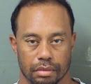 逮捕されたタイガー・ウッズの現在の顔写真www