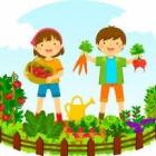 『野菜を育てる庭を英語で何と呼ぶか』の画像