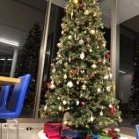『4メートルのクリスマスツリー★』の画像