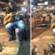 【猫】ストリートミュージシャンが歌ってたら何故か猫が集まってきて座って夢中に聴く 可愛すぎワロタ