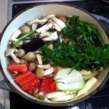 『病気にならないためのスープの作り方』の画像