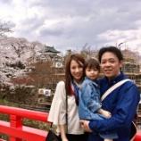『【弘前さくらまつり】今年は桜を楽しめたかな?』の画像