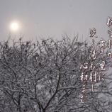 『フォト短歌「粉雪静か」』の画像