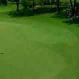 『【動画】ゴルフのスーパーショット、ミラクルショットのまとめ』の画像