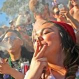 『【ヤバイ】大麻解禁を主張する芸能人・有名人一覧をご覧くださいwwwwww』の画像