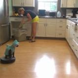 『ルンバでキッチンを徘徊するコスプレ猫がシュールすぎる!』の画像