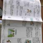 『腎移植手術当日の予定表(説明)貼りますね』の画像