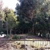 堺市にある古墳の魅力を伝え隊・第16回 いたすけ古墳の倍塚『善右ヱ門山古墳』は5世紀初頭の方墳