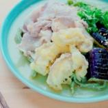 『マッシュルームの天ぷら添え手打ち青のりうどん』の画像