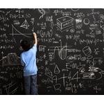 数学得意な奴ってどういう脳内構造してんの?