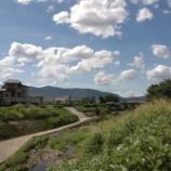『向日市』の画像