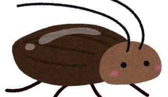 【衝撃】ゴキブリの研究でとんでもない耐性があることが判明…その理由がこちら→