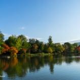 『秋晴れの中島公園Nakajima Park in autumnal weather.』の画像