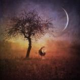 『水星逆行明けとブラックムーン』の画像