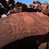 『聖地を爆破』の画像