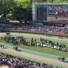 『府中牝馬ステークス2021 予想見解』の画像