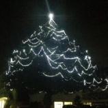 『圧巻の高さ25m!関市の中学校で冬の巨大イルミネーションツリーが見れますよ。クリスマスにいかがですか☆(岐阜県関市・小金田中学校)』の画像