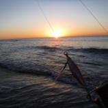 『撃沈サーフからの福引の結果は・・・』の画像