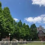 明治学院大学法学部 公式ブログ