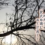 『冬の空』の画像