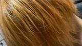 インキャワイを髪の毛を金髪へwww(※画像あり)