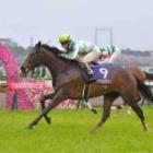 『未来の無敗牝馬3冠馬のビジョンが見えた・・』の画像