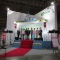 東京ゲームショウ2014 その127(VOLTAGE)