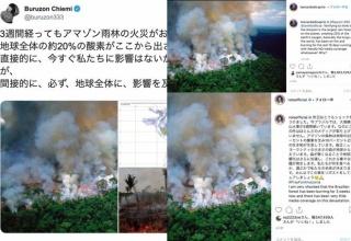 ローラやブルゾンちえみも拡散。アマゾン火災で世界に「無関係」な写真が広がる