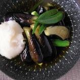 『茄子の揚げ浸しより美味しい茄子の料理なんてあるの?』の画像
