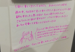 【乃木坂46】ぐうかわwww掛橋沙耶香ちゃん、魔性の女っぷりがヤバいwww
