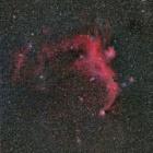 『72FL+レデューサー+SAWT350によるカモメ星雲 2020/03/29』の画像
