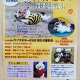 『大好評!飛行犬撮影会の開催が決定しました!!』の画像