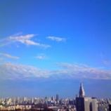『今朝の雨がうそのように』の画像