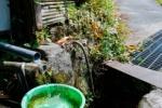 梅雨で爽やか!?私市の地下水、清涼感じる曲がり角~交野さんぽ㊶~