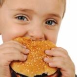 『アメリカのチーズバーガーが残念すぎる』の画像