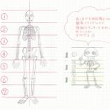 『骨格も筋肉も形が複雑!でも簡素化すればかわいいもの。』の画像