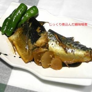 長時間煮込んで贅沢なお味!鯖の味噌煮
