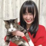 『[ノイミー] 川中子奈月心「やる気のない猫とそれを見て笑う少女 。」』の画像
