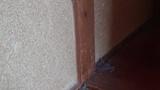 部屋掃除しなすぎて、たまりにたまったホコリまみれのぼくの自室の片隅がコチラwww(※画像あり)